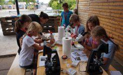 Kinder für Forschung begeistern: Veranstaltung im Jadebad Wilhelmshaven